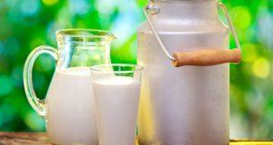 поправиться от молока